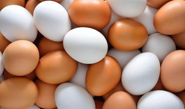 عرضه گسترده تخم مرغ در میادین میوه و تره بار؛ هر کیلوگرم 14200 تومان